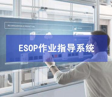 ESOP作业指导书系统